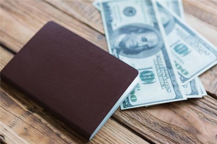 ضوابط ورود و خروج ارز همراه مسافر و رانندگان عبوری - قوانین جدید مقدار مجاز ارز همراه